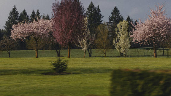 A Photo Guide To The Willamette Valley